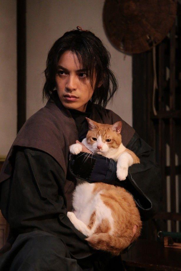 劇場版『猫忍』は17年に全国公開される予定