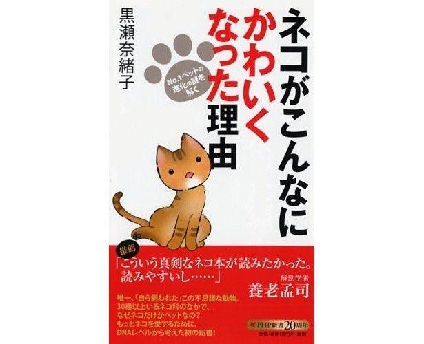 『ネコがこんなにかわいくなった理由』(黒瀬奈緒子/PHP研究所)