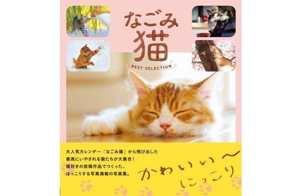 『なごみ猫 BEST SELECTION』(山と渓谷社)